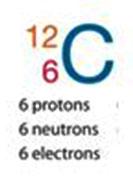 neutronsProtons
